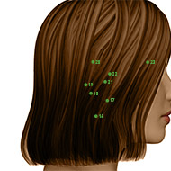 TB19 Triple Burner or Sanjiao Meridian Acupuncture Point - Dermal / Skin level.