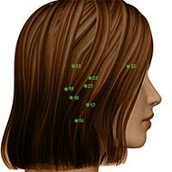 TB21 Triple Burner or Sanjiao Meridian Acupuncture Point - Dermal / Skin level.