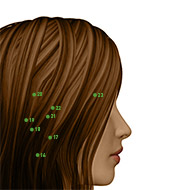 TB23 Triple Burner or Sanjiao Meridian Acupuncture Point - Dermal / Skin level.